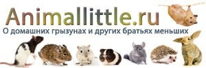 Логотип сайта Animallittle.ru